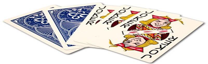 the joker-PokerLion
