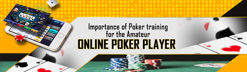 Importance of Poker Training for Amateur Online Poker Player
